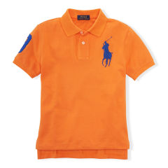 Polo T Shirt with Embroidery